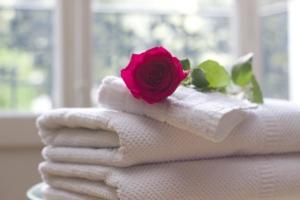K1024 towel 759980 1280 300x200 - Reinigung -